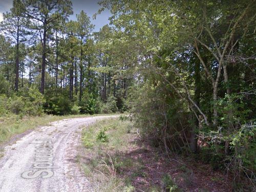 .67 Acres In Brookeland, TX : Brookeland : Jasper County : Texas