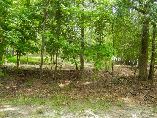 .23 Acres In Coldspring, TX : Coldspring : San Jacinto County : Texas