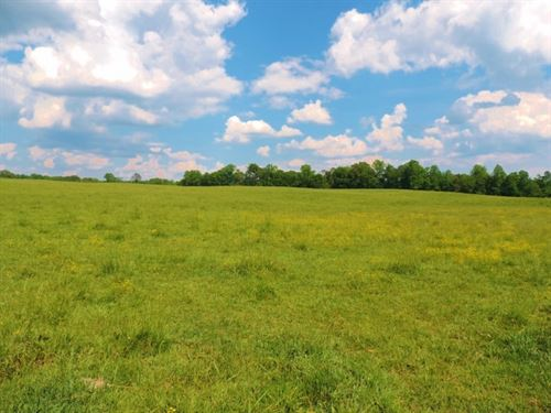 Pasture, 3 Homes, & 5 Ponds : Monticello : Jasper County : Georgia