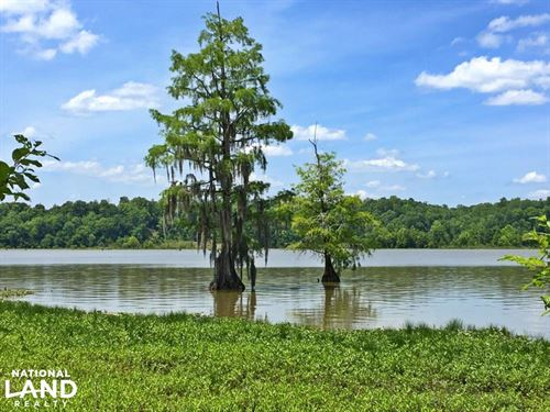 Sand Island River Lot 6 : Millers Ferry : Wilcox County : Alabama
