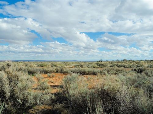 .25 Acres In Concho, AZ : Concho : Apache County : Arizona