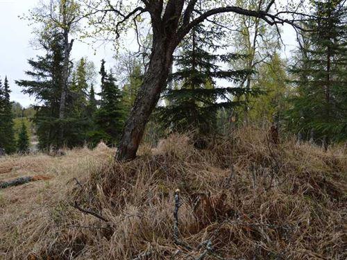 1.12 Acres of Land in Clam Gulch : Clam Gulch : Kenai Peninsula Borough : Alaska