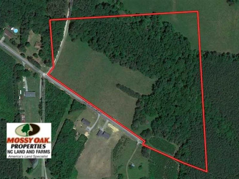Under Contract, 22 Acres of Timbe : Oxford : Granville County : North Carolina