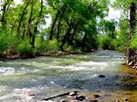 200 Feet From Alamosa River : Capulin : Conejos County : Colorado