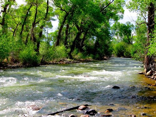 200 Feet From Alamosa River : Capulin : Conejos County : Colorado