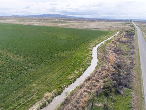 Burlington Irrigated Farm : Burlington : Big Horn County : Wyoming