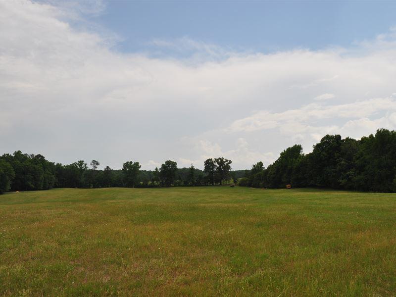 Long Meadow : Greensboro : Greene County : Georgia