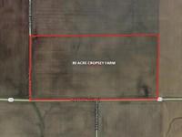 81 Acre Cropsey Farm : Cropsey : McLean County : Illinois