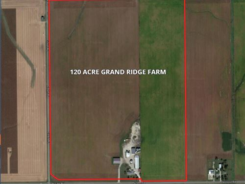 120 Acre Grand Ridge Farm : Grand Ridge : LaSalle County : Illinois