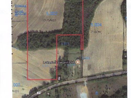 Beautiful Farm Land : Cottonwood : Houston County : Alabama