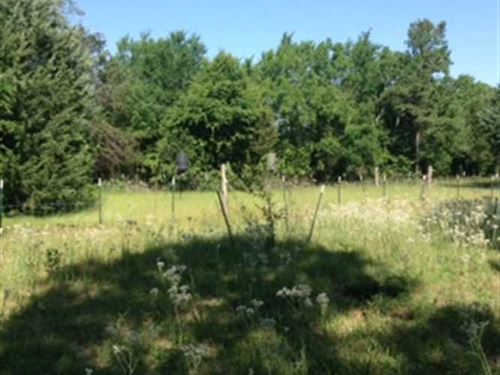 20 Acre Mountain Top Hunting And : Jacksonville : Cherokee County : Texas