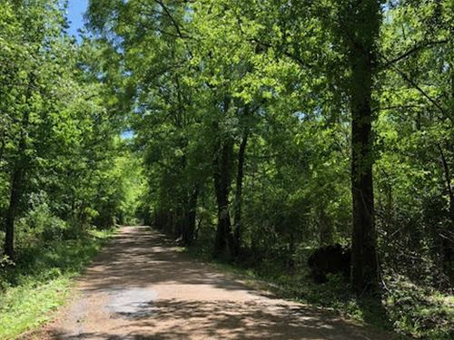 A Great Hunting Tract Secluded : Smithdale : Amite County : Mississippi