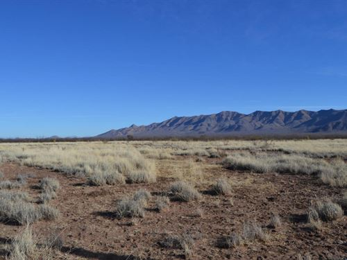 1.68 Acres In Sanders, AZ : Sanders : Apache County : Arizona