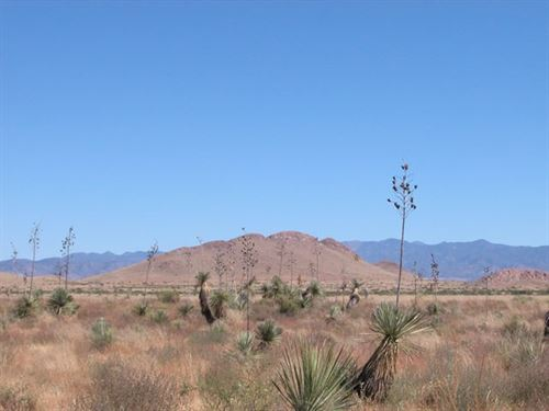 1.65 Acres In Sanders, AZ : Sanders : Apache County : Arizona