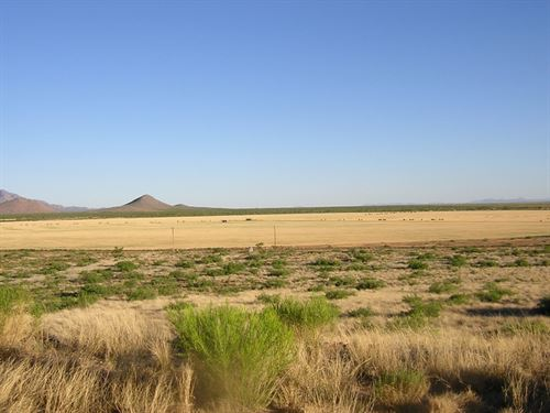 1.09 Acres In Sanders, AZ : Sanders : Apache County : Arizona