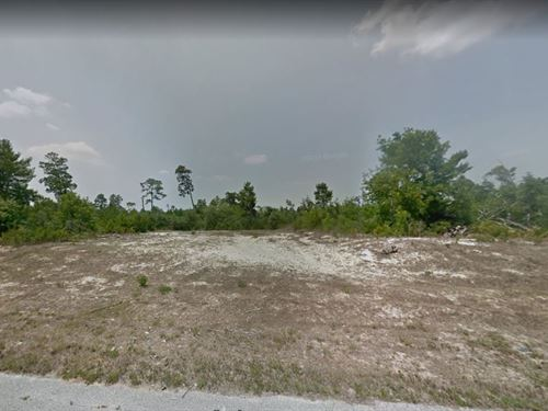 .19 Acres In Poinciana, FL : Poinciana : Polk County : Florida