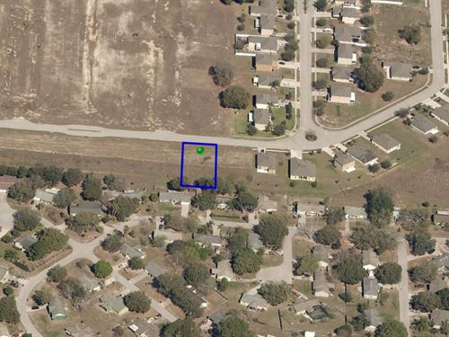 .27 Acres In Mascotte, FL : Mascotte : Lake County : Florida