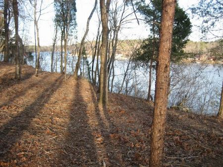 Beautiful Taylors Ferry Lot # 11 : Quinton : Walker County : Alabama