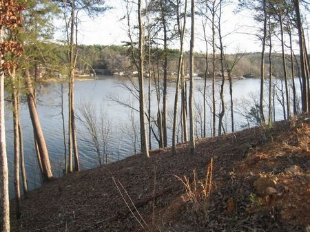 Taylors Ferry Bankhead Lake Lot #7 : Quinton : Walker County : Alabama