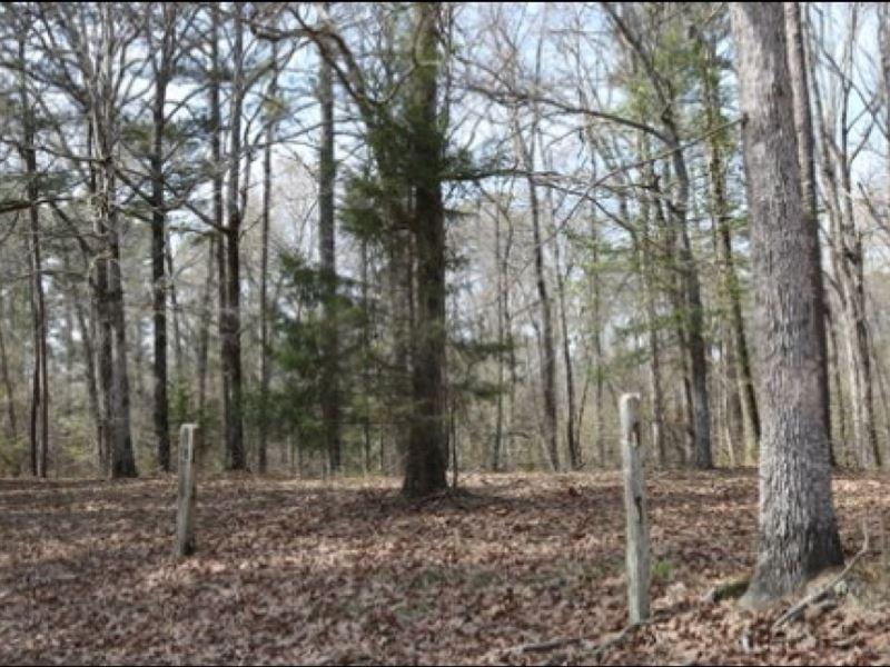 15.4 Acres In Neshoba County In Phi : Philadelphia : Neshoba County : Mississippi
