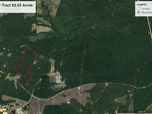 Timber & Hunting : Stephens : Oglethorpe County : Georgia