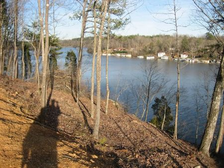 Waterfront Lot #6 Taylors Ferry : Quinton : Walker County : Alabama
