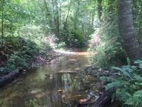 134 Acres On Turkey Creek : Honea Path : Abbeville County : South Carolina