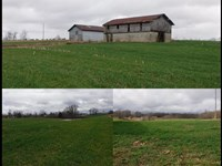 31.80 Ac, Home, Pole Barn, 2 Barns : Red Boiling Springs : Clay County : Tennessee