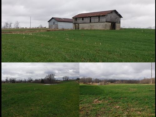 31.80 Ac W/ Hm, Pole Barn, 2 Barns : Red Boiling Springs : Clay County : Tennessee