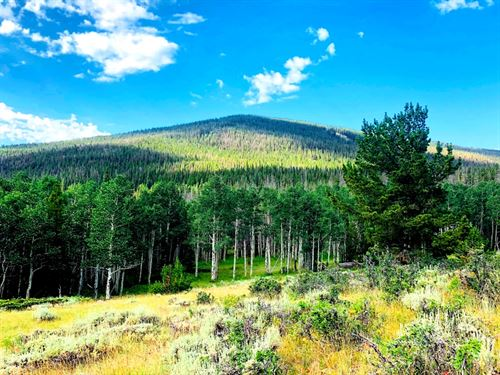 Green Mountain Retreat : Encampment : Carbon County : Wyoming