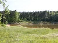Beaverdam Creek : Crawfordville : Taliaferro County : Georgia
