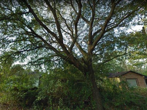 1.05 Acres In Panama City, FL : Panama City : Bay County : Florida
