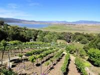 Tranquil Mesa Grande Lake View Home : Santa Ysabel : San Diego County : California