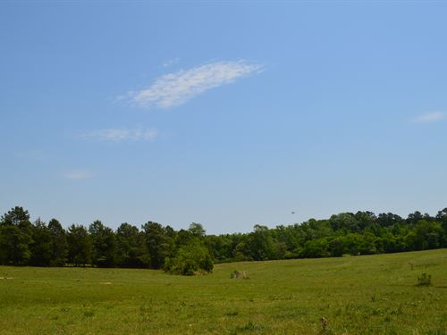 31+/- Acre Farm In Cowpens : Cowpens : Spartanburg County : South Carolina