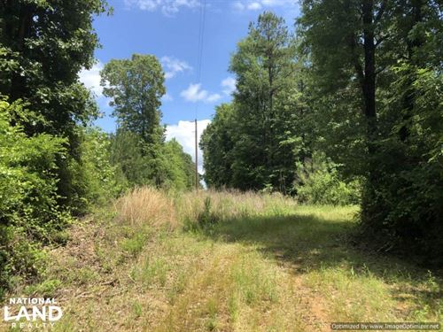 80 Acres Sallis : Sallis : Attala County : Mississippi