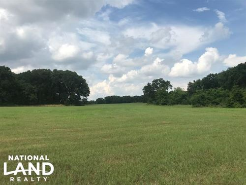 Rolling Pasture, Timber, Ponds, Nea : Mabank : Henderson County : Texas