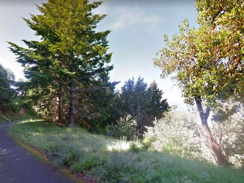.24 Acres In Shelter Cove, CA : Shelter Cove : Humboldt County : California