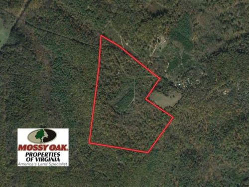 99 Acres of Hunting Land For Sale : Goshen : Rockbridge County : Virginia