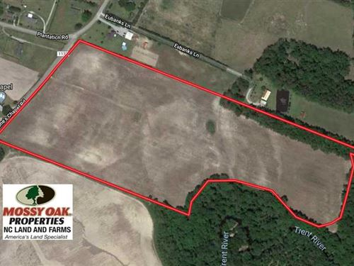 36 Acres of Farm Land For Sale in : Trenton : Jones County : North Carolina