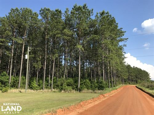 Roberts Road Kelly Trail Timber Hun : Chunchula : Mobile County : Alabama