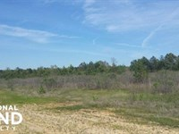 Developer's Dream : Pearl : Hinds County : Mississippi