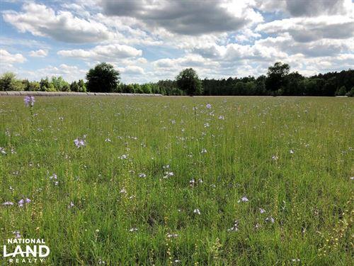 Restful Acres Farm : Ridgeland : Jasper County : South Carolina