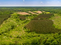 Reduced Land In Oxford Ms : Oxford : Lafayette County : Mississippi