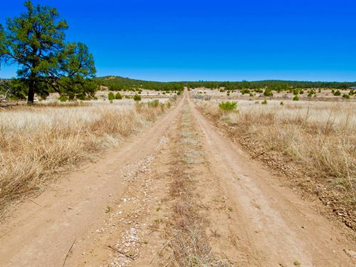 Lot W Electricity & Road Frontage : Ramah : Cibola County : New Mexico