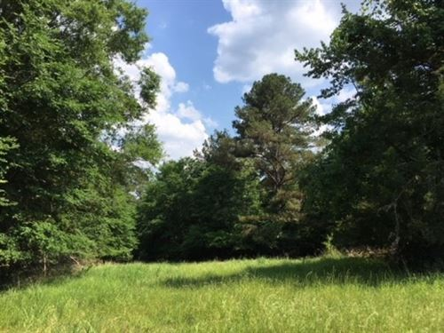 4 Acres In Madison County : Madison : Mississippi