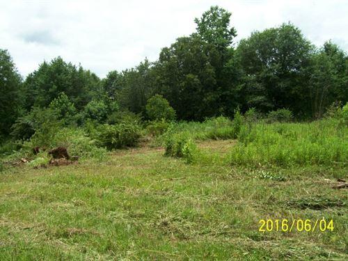 Vacant Land : Barnesville : Lamar County : Georgia