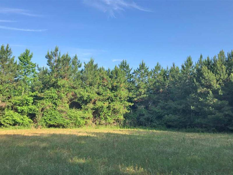 Bushy Creek Tract : Perdido : Baldwin County : Alabama