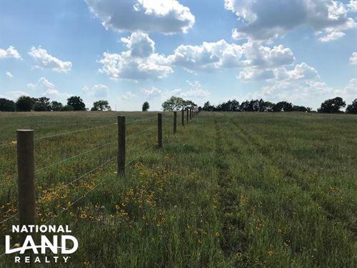 13.5 Acres, Rolling, Pasture, Timbe : Mabank : Van Zandt County : Texas