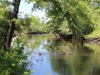 138.5 Acres - Williamsburg Co, Sc : Greeleyville : Williamsburg County : South Carolina