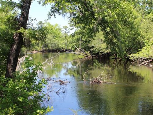 138.5 Acres - Williamsburg Co, Sc : Greeleyville : Williamsburg County : South Carolina